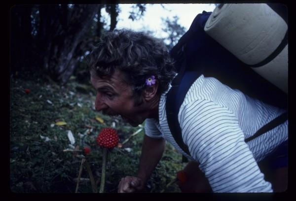 Mongo like flower!