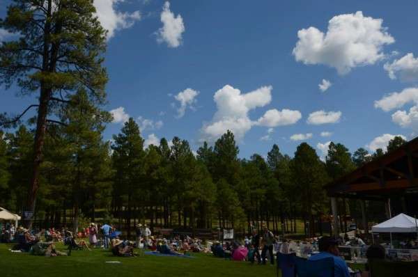 Pickin in the Pines <br/>