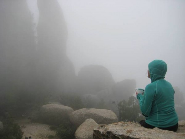 In a cloud at the Dog Park  <br/>  <br/> Mt. Lemmon