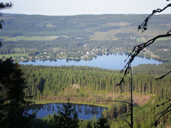 Grasmark - Varmland - Sweden