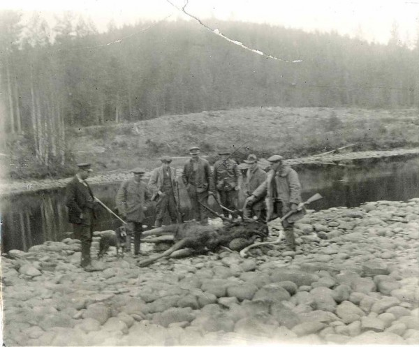 Grasmark by the river Rottnan - Hunting moose 1920s