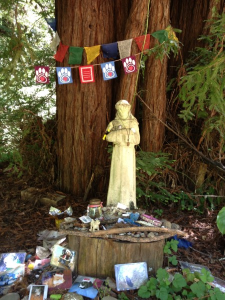 Pet Memorial, Land of Medicine Buddha, Santa Cruz Mountains