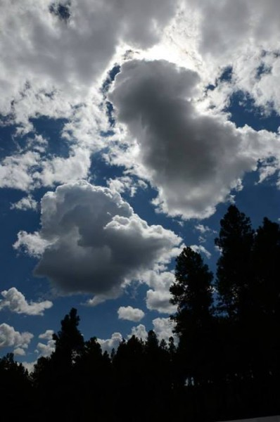Flagstaff clouds... so welcome and wonderful.