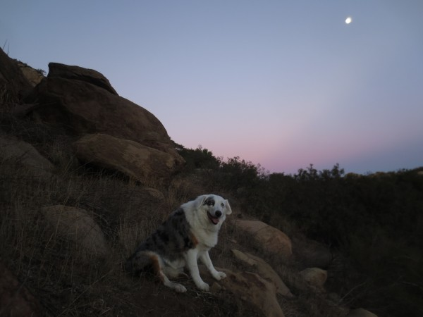 The moon was waxing.