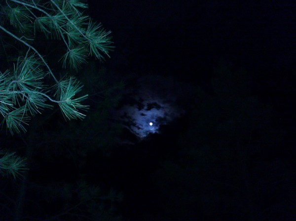 something about the mmoon and the clouds brings out the warewolf.