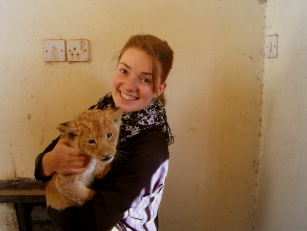 aaaand I get to play with lion cubs that are still teething, so you ca...