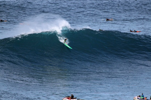 This chick was charging! <br/> Jaws 1-19-14 <br/> Photo: Olaf Mitchell
