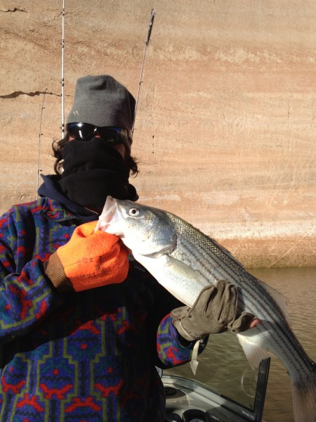 C.A. with a nice little striper caught on a spoon in 40' water.