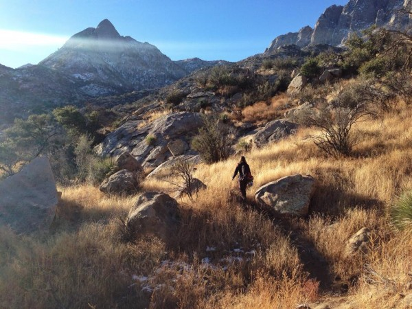perfect light along the hike in