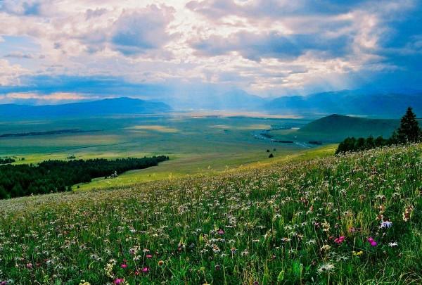 Altai Republic, near Kosh Agach, Russia