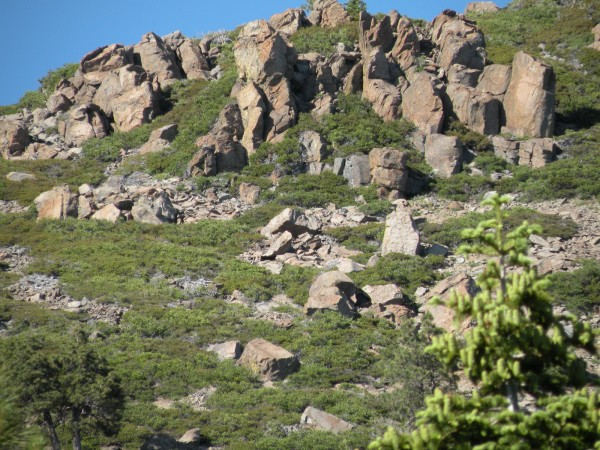 Shrinking Crags 101