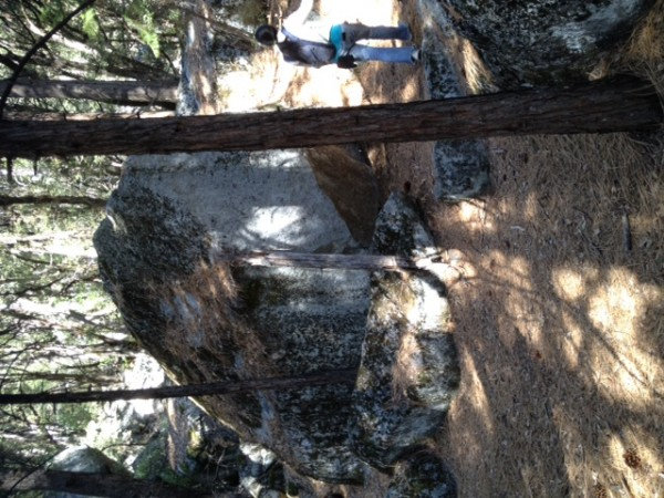 log leaning against boulder (kinda hard to see)