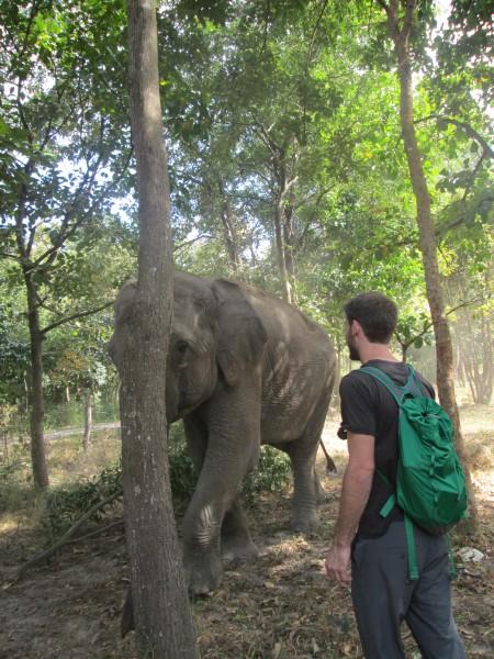 Me and Lucky, Betelnut Tour of Phnom Tamao Wildlife Rescue Center, Cam...