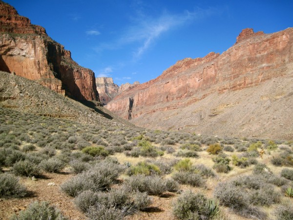 Looking up Slate Canyon to the rim (Harvey Butchart found a route ...