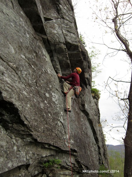 Tyson on the classic Mad Woman 10d
