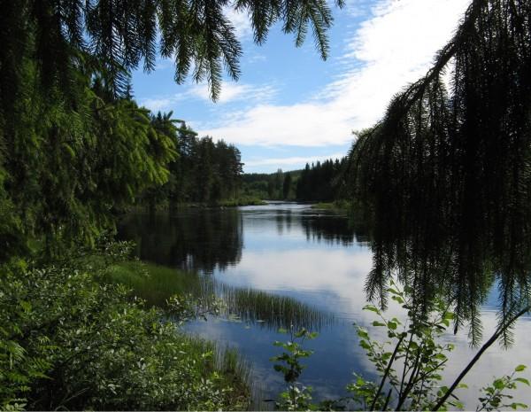 Flisa river