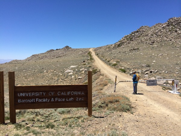 White Mountain trailhead