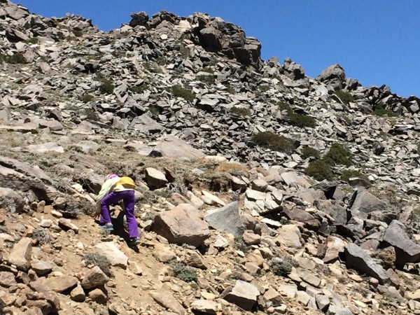 Scrambling near White Mountain trailhead