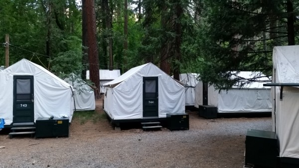Curry village tents_118