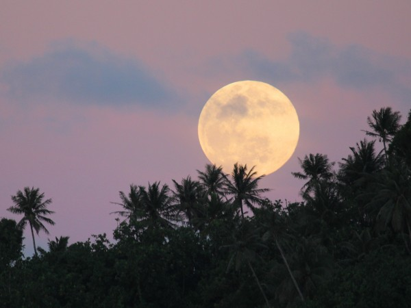 Moonrise at sunset over Kosrae, Micronesia.
