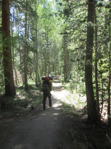 North Fork of the Big Pine Trail