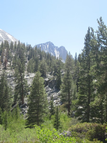 Temple Crag from North Fork of the Big Pine Trail