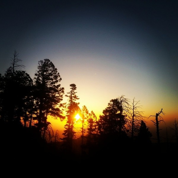 Summit sunset with Jefe  <br/> Mt. Lemmon  <br/> June 8th