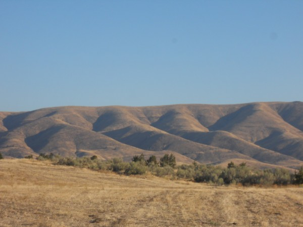 Hills surrounding Tygh Valley