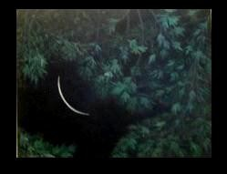 A PAINTING... of one of  my other moonshots... moon, facing the other ...