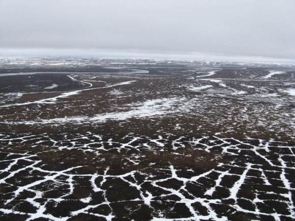 permafrost polygons