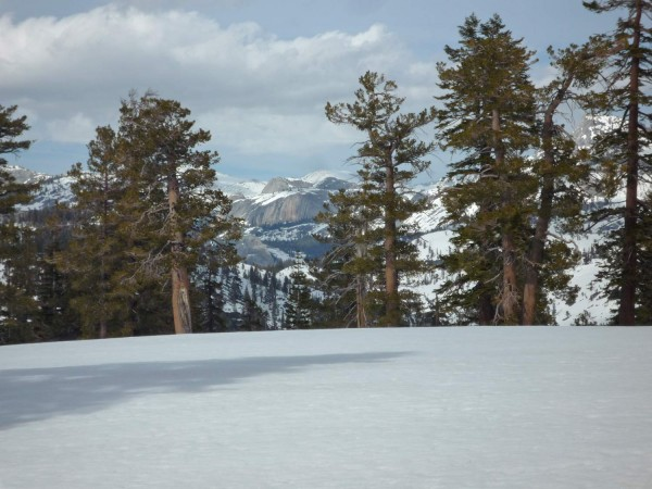 Looking at Medlicott Dome in Tuolumne Meadows from the summit of Mt Wa...