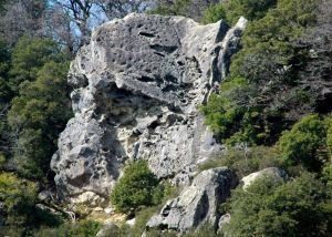 Castle Rock - The Great Roof 5.10 or 5.12 - Bay Area, California USA. Click to Enlarge