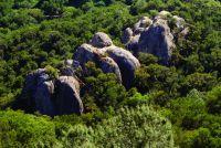 Mt Diablo - Jungle Book 5.10d - Bay Area, California USA. Click to Enlarge
