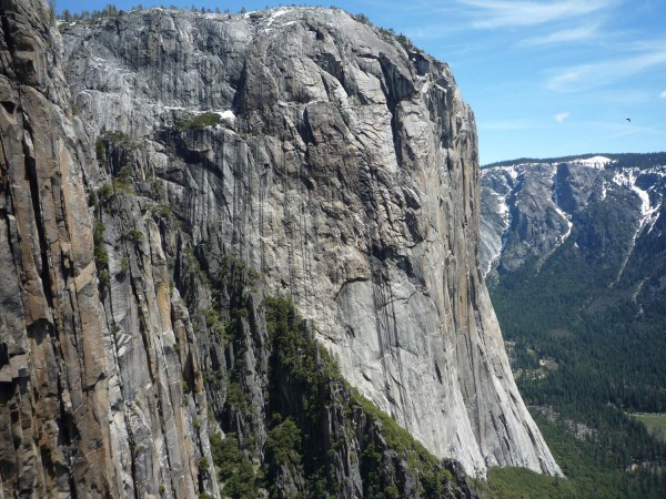 Great view of the West Face of El Capitan. Still some hints of snow on...