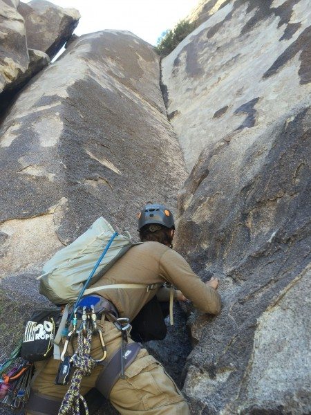 Scrambling to P1 of Lyons and Tigers and Moes. <br/>