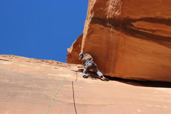 reaching for hanging dirtsnake