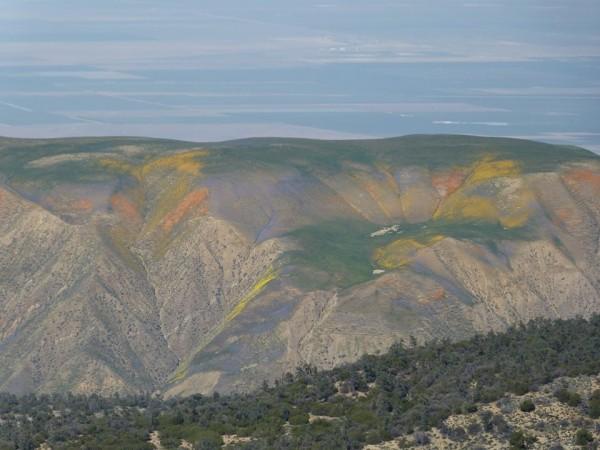 Along Hudson Ranch Road, overlooking the Maricopa Flats, Los Padres Na...