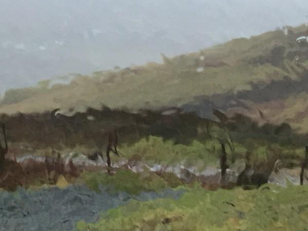 Isle of Skye in rather pouring rain (1/26/16).