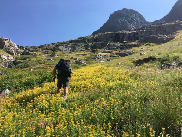 Hiking up flowery hillside above the big lake (name) in Goddar...