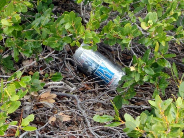 Branscomb Beer? Left on top of a climb near a now closed and abandoned...