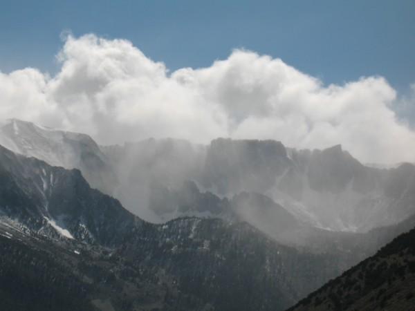 Eastern Sierra, early summer.