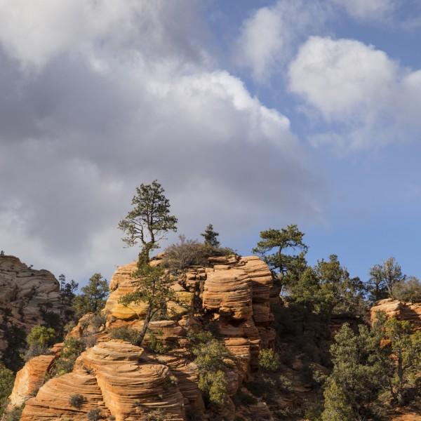 Please Identify Long Thread Like Worm In Stool: The Wonders Of Sandstone, Redux :: SuperTopo Rock Climbing