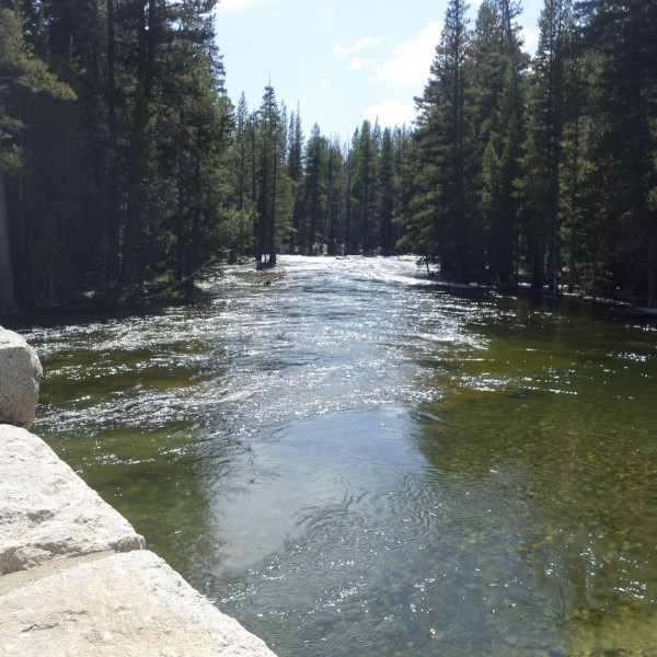 Tuolumne River at the Bridge.