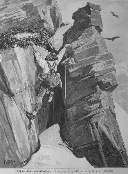 Picking eggs (1893)