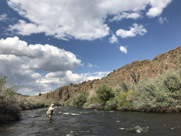 Stimbo showing us around the East Walker river. Fun to meet a Supertac...