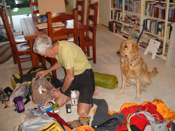 My dining room: Donini looking for his socks - my dog buried them in t...