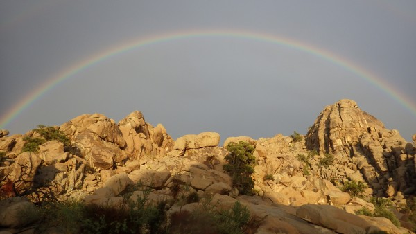 RLF's Rainbow      CREDIT: Robert Fonda