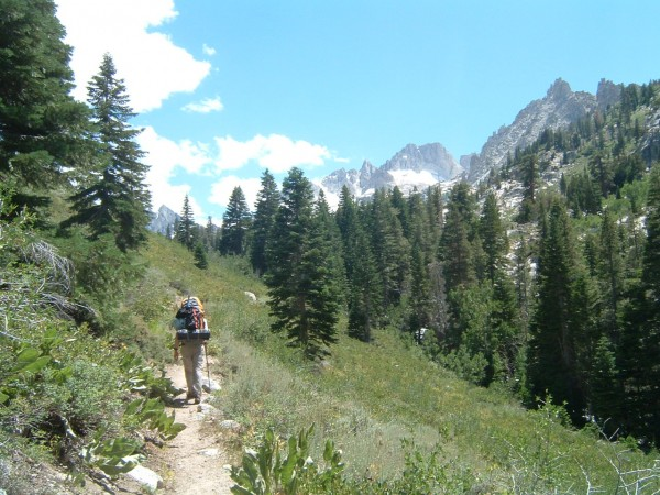 Up the Horse Creek trail