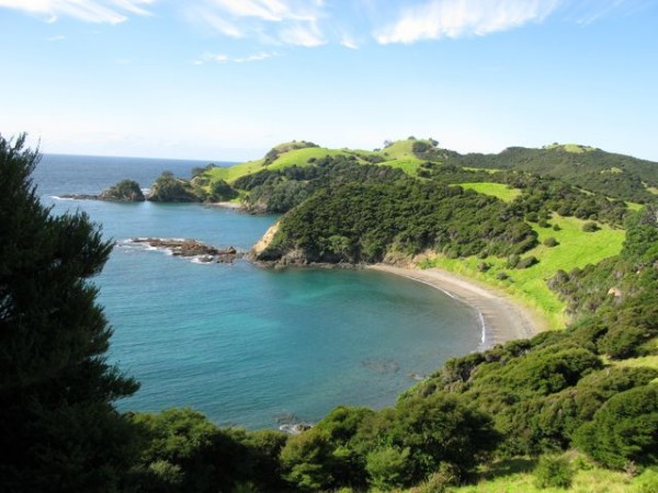 Urupukapuka Island, Bay of Islands.