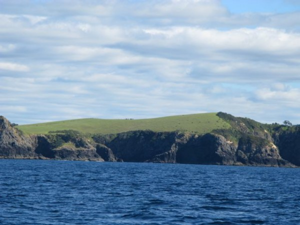 Near Cape Karikari.